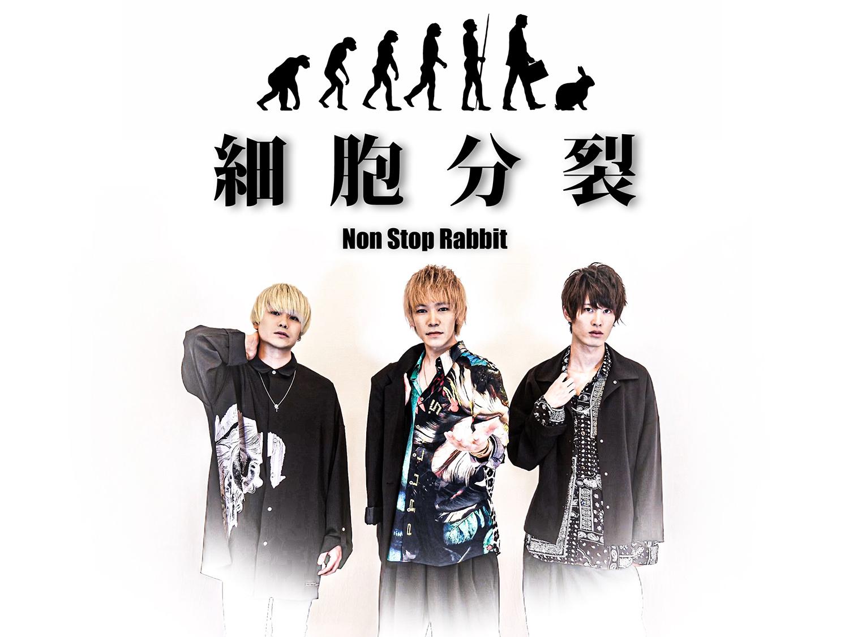 Non Stop Rabbit メイン画像